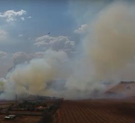 Região de Mococa pede ajuda do Estado para conter incêndios