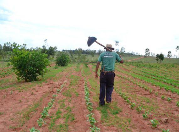 PL 410/2021: pesquisadores da questão agrária pedem fim de urgência